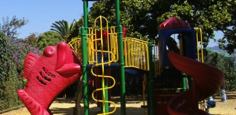 Public Play Structures of Alameda, CA: A Taxonomy