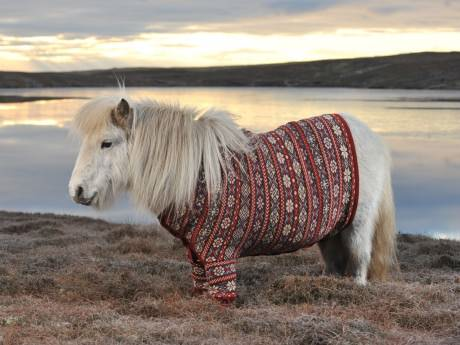 Saturday Links: Triple Shetland Edition