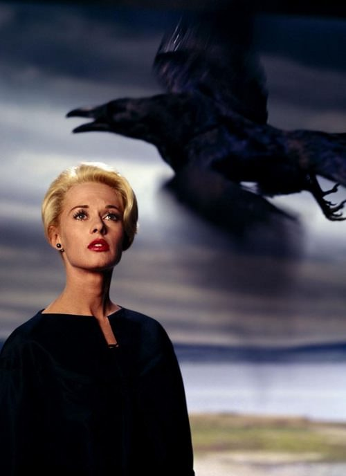 Tippi Hedren, publicity still for The Birds, 1963. Photograph by Philippe Halsman.
