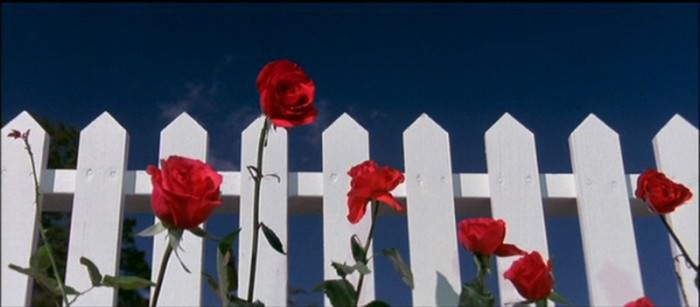 Still from David Lynch's Blue Velvet, 1986.