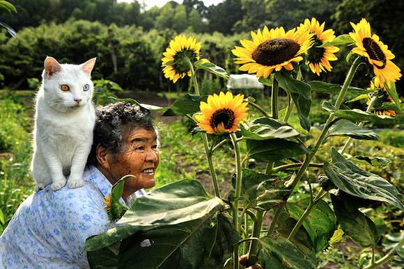grandmother_and_cat