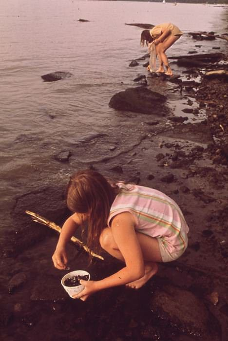 Collecting Rocks and Shells Along the Banks of the Ohio River, June 1972 by William Strode, via the U.S. National Archives on Flickr.