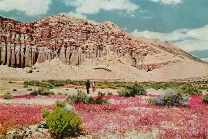 Redrock Canyon, Kern County, National Geographic, 1942; via Endless Me.