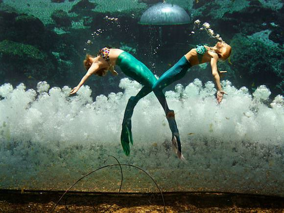 real_mermaids