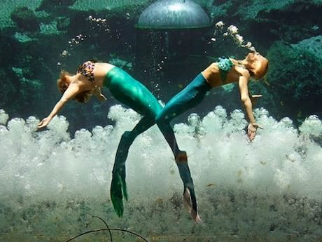 Saturday Links: The Mermaids of Weeki Wachee Springs Edition