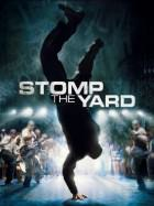 Stomp-the-Yard-dvd