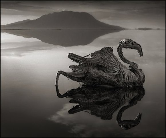 lake_natron