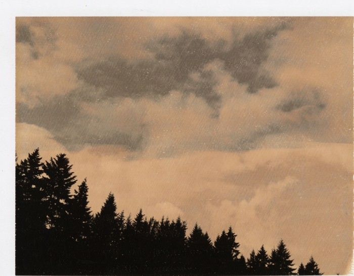Polaroid by Autumn de Wilde.