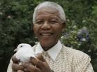 Saturday Links: Thank You, Nelson Mandela Edition