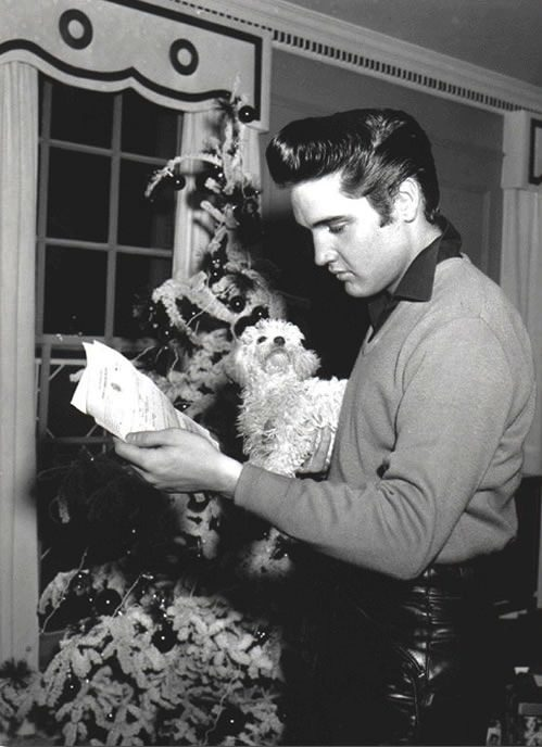 Elvis Presley photographed reading his draft notice at Graceland, 1957. Via Elvis Australia; original source unknown.