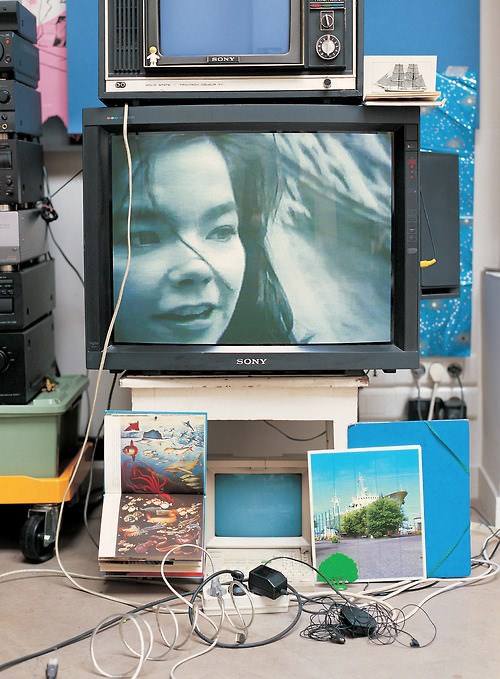 Cover of the DVD Vessel by Björk. Via Wikipedia.