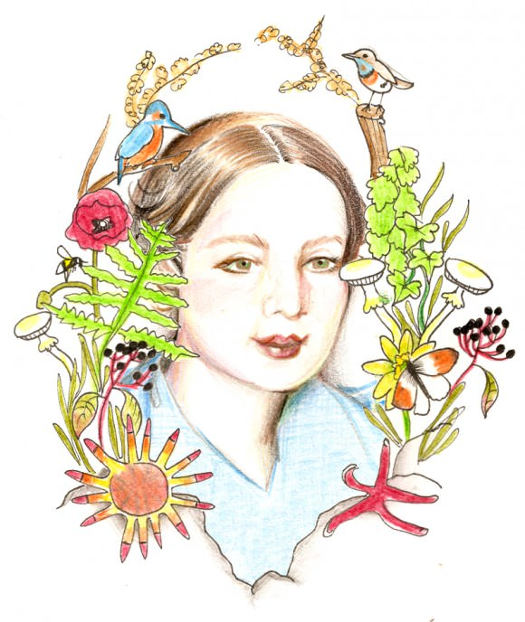 Illustration by Leanna.