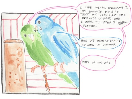 Sunday Comic: Love Birds