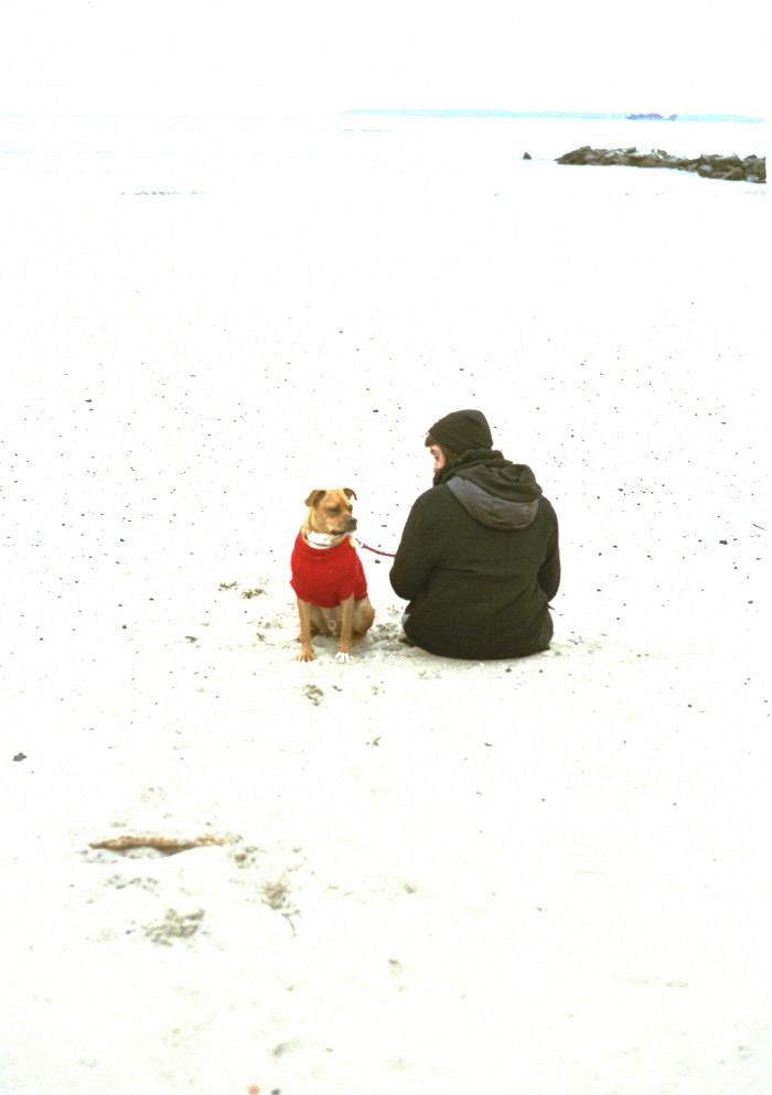 allyssa-beach-5