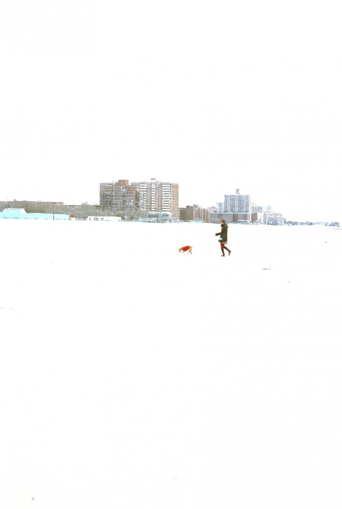 allyssa-beach-6