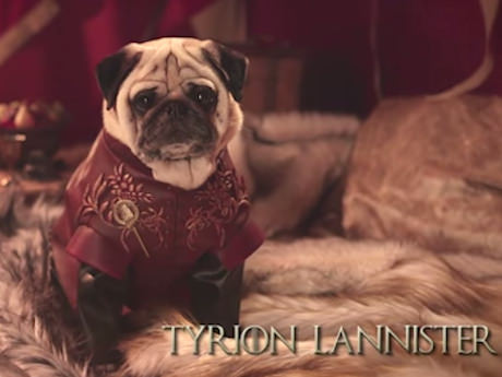 Saturday Links: Pugs of Westeros Edition