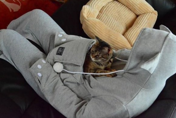 Photo of the mewgaroo hoodie, via Laughing Squid.