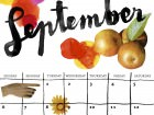 Saturday Printable: A September Calendar