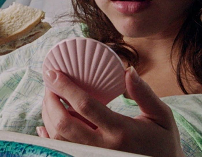clamshell1