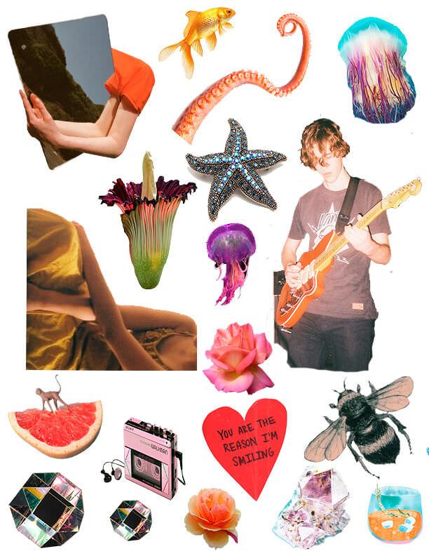 Rookie » Collage Kit