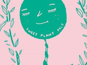 Meet the Plants